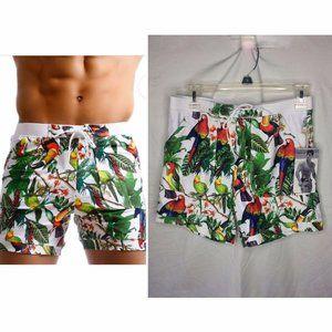 Taddlee Swim Shorts Board Shorts Tropical bird